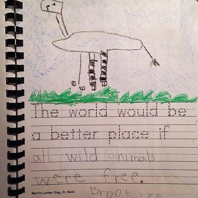 """""""Die Welt wäre ein besserer Ort, wenn alle Wildtiere frei leben könnten."""""""
