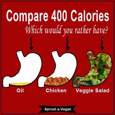 Fett und Tierprotein (zusammen mit raffiniertem Zucker) verursachen Übergewicht – warum das so ist, zeigt dieses Schaubild