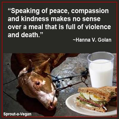 """""""Von Frieden, Mitgefühl und Güte zu reden macht keinen Sinn, während man Mahlzeiten voller Gewalt und Tod zu sich nimmt."""""""