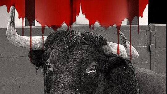 """Petition gegen den Stier""""kampf"""" in Frankreich"""