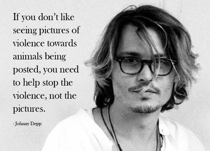 """""""Wenn Du nicht magst, dass Bilder gepostet werden, auf denen Gewalt gegen Tiere zu sehen ist, dann solltest Du die Gewalt gegen Tiere bekämpfen, aber nicht die Bilder."""" – Johnny Depp"""