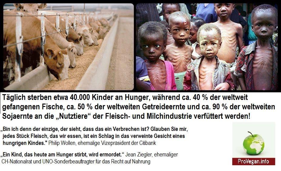 Mord an täglich etwa 40.000 Kindern!