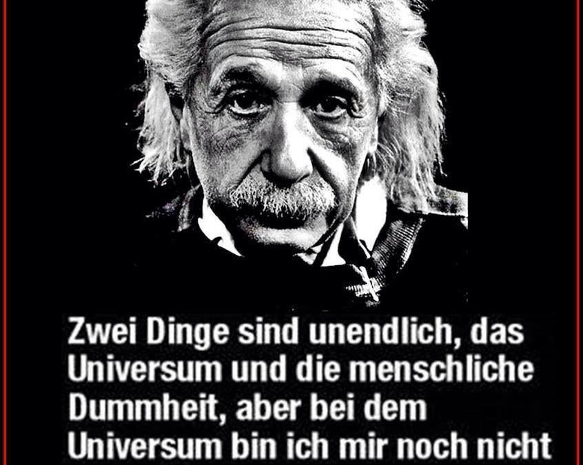 Albert Einstein über Die Krone Der Schöpfung Veganbook