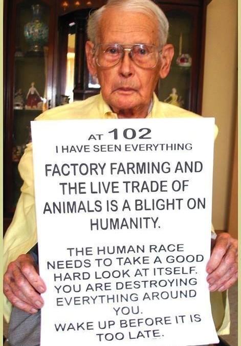 Kluge Worte eines weisen, 102 Jahre alten Mannes