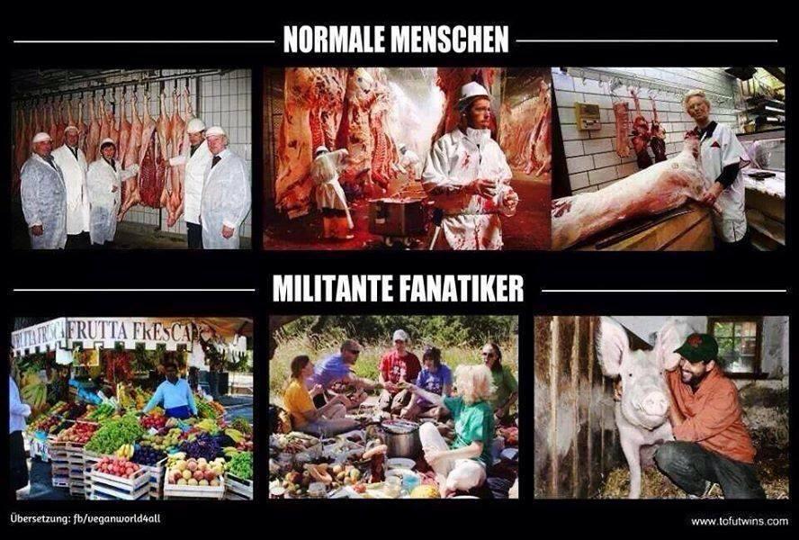 Verrückte Welt – mangelnde Empathie und mangelnde Intelligenz sind die Hauptfeinde des Veganismus!