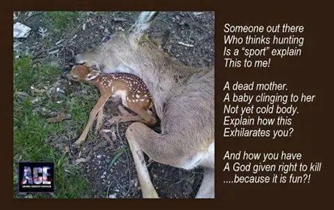 Ein Baby kuschelt sich an seine ermordete Mutter