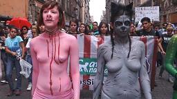 Hunderte protestieren gegen Stierkampf in Mexiko