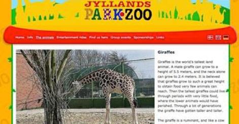 In Dänemark soll die nächste Giraffe sterben – wegen uninteressanter Gene!