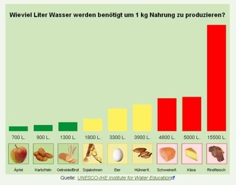 Wasserkrise durch zu hohen Verbrauch wegen der Produktion von Tierprodukten