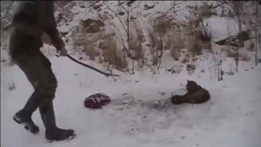 Das Video zeigt Menschen mit Empathie, die einen Luchs aus einer Falle retten