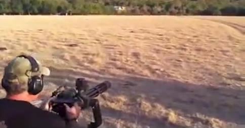 Mann jagt Wildschweine mit Maschinengewehr