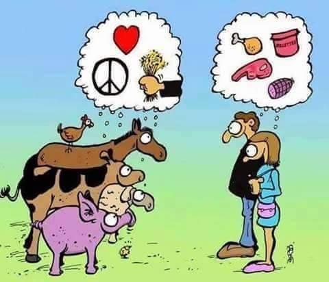 Einer der wichtigsten Unterschiede zwischen Mensch und Tier