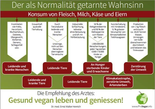 Der als Normalität getarnte Wahnsinn: Der Konsum von Fleisch, Milch, Käse und Eiern