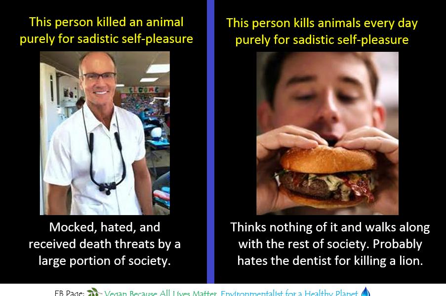 Die total gestörte Gesellschaft