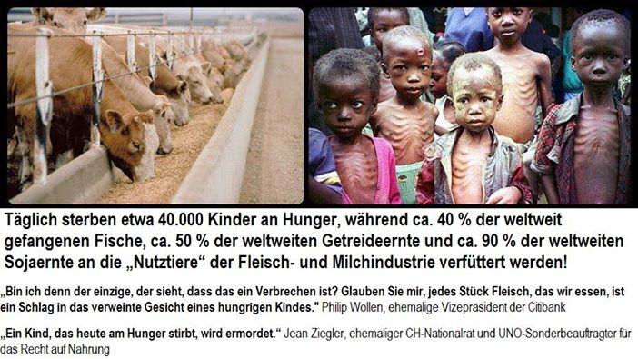 Die Kinder sterben nicht nur, weil die Menschen das Fleisch und andere Tierqualprodukte in den eigenen Mund stecken, sondern auch in den ihres Haustiers!