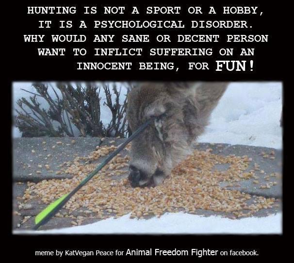 Jagd ist kein Sport oder Hobby, sondern eine psychische Erkrankung.