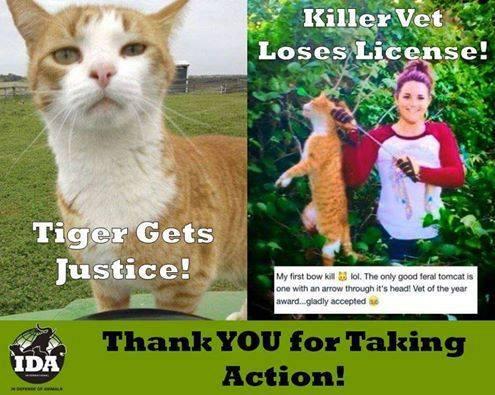 Der Katzenkillerin und Tierärztin Kristin Lindsey wurde ihre Zulassung als Tierärztin entzogen – der massive Protest aus der Bevölkerung und die Petitionen haben dies bewirkt