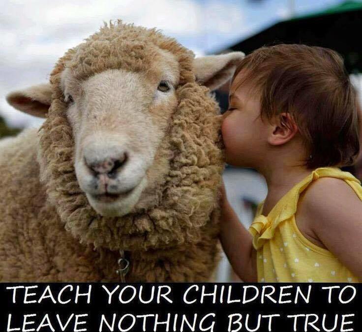 Wenn Dir etwas an einer besseren Welt liegt, dann lehre Deinen Kindern echtes Mitgefühl.