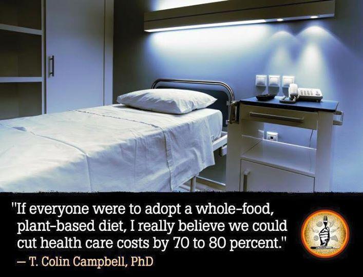 """Eine wichtige Botschaft von Prof. Dr. T. Colin Campbell: """"Wenn jeder eine vollwertige pflanzliche Ernährung durchführen würde, dann könnten die Kosten im Gesundheitswesen um 70- 80 % gesenkt werden."""""""