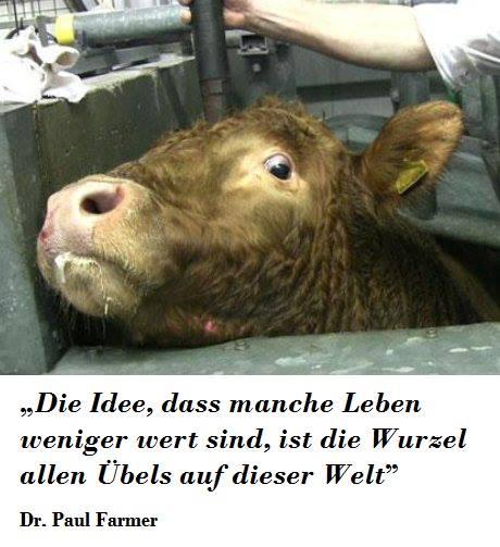 """Die Idee, dass Tiere weniger wert sind als Menschen und """"Nutztiere"""" weniger wert sind als Haustiere, ist die Wurzel allen Übels auf dieser Welt. (EWH)"""