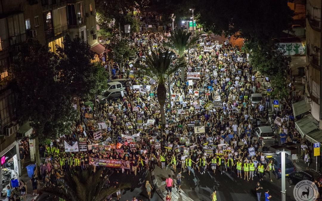 10.000- 15.000 Menschen demonstrieren in Tel Aviv für Tierrechte – warum ist das in so einem kleinen Land möglich?