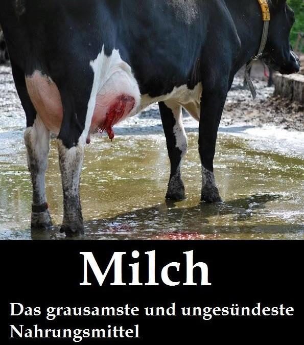 """Am 1. Juni war """"Tag der Ausbeutung, der Grausamkeit und des Mords"""", auch """"Tag der Milch"""" genannt!"""