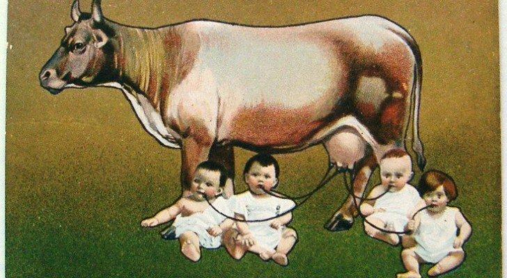Milch und Milchprodukte sind die gesundheitsschädlichsten Nahrungsmittel – die Anzahl der Studien ist mittlerweile überwältigend, die dies zeigen