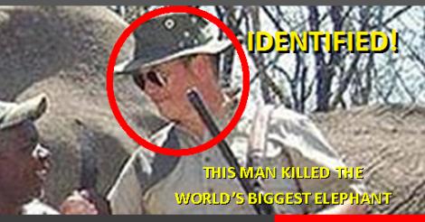 Elefanten-Killer identifiziert