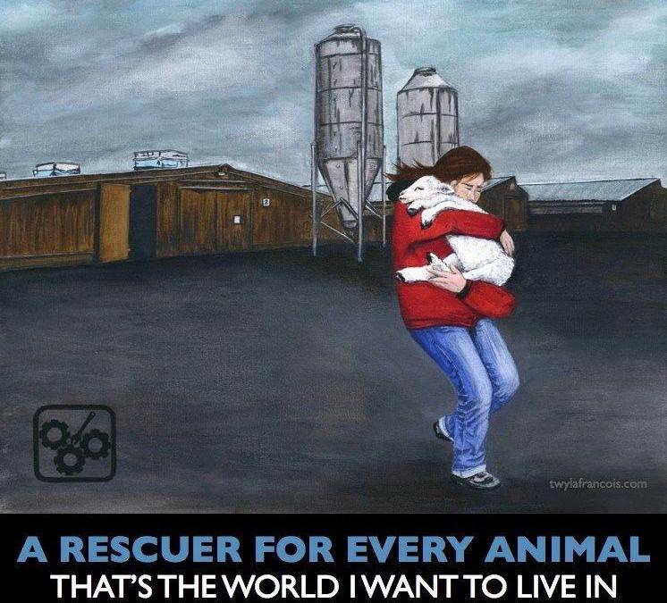 """""""Ein Retter für jedes Tier – das ist die Welt in der ich leben möchte"""""""