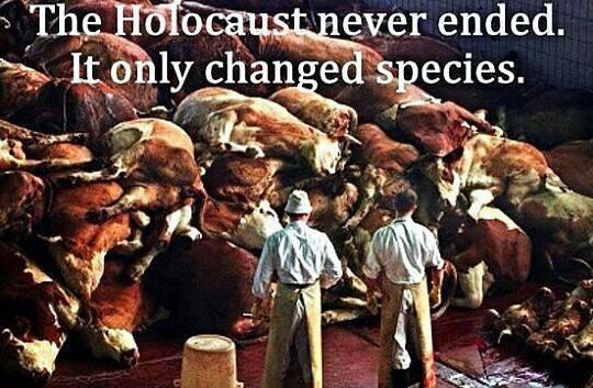 """""""Der Holocaust ist nie zu Ende gegangen. Nur die Opfer sind verschieden."""""""