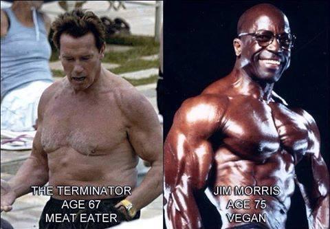 Der omnivore Terminator (Arnold Schwarzenegger) im Alter von 67 Jahren und der vegane Jim Morris im Alter von 75 Jahren