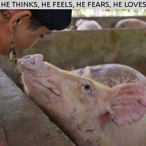 Er denkt, er fühlt, er fürchtet sich, er liebt