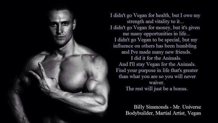 """""""Ich wurde nicht wegen der Gesundheit vegan"""""""