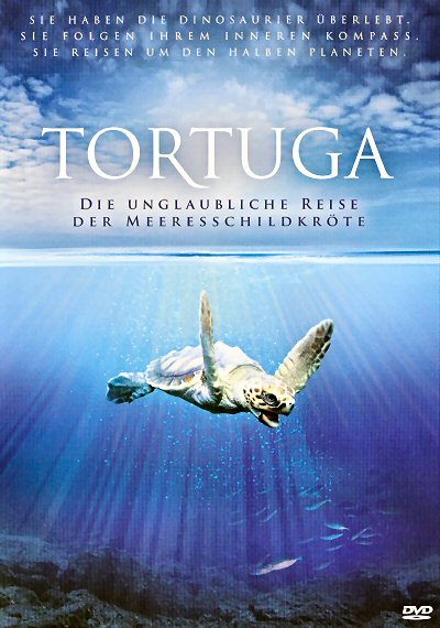 TV-Film: Tortuga – Die unglaubliche Reise der Meeresschildkröte