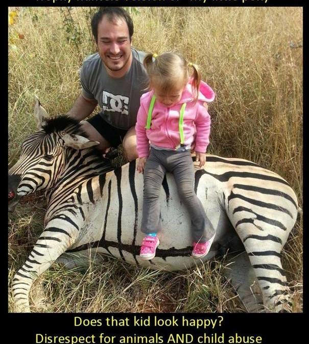 Ein Baby-Zebra wurde hingerichtet – ein Kind für die Zurschaustellung des Opfers missbraucht