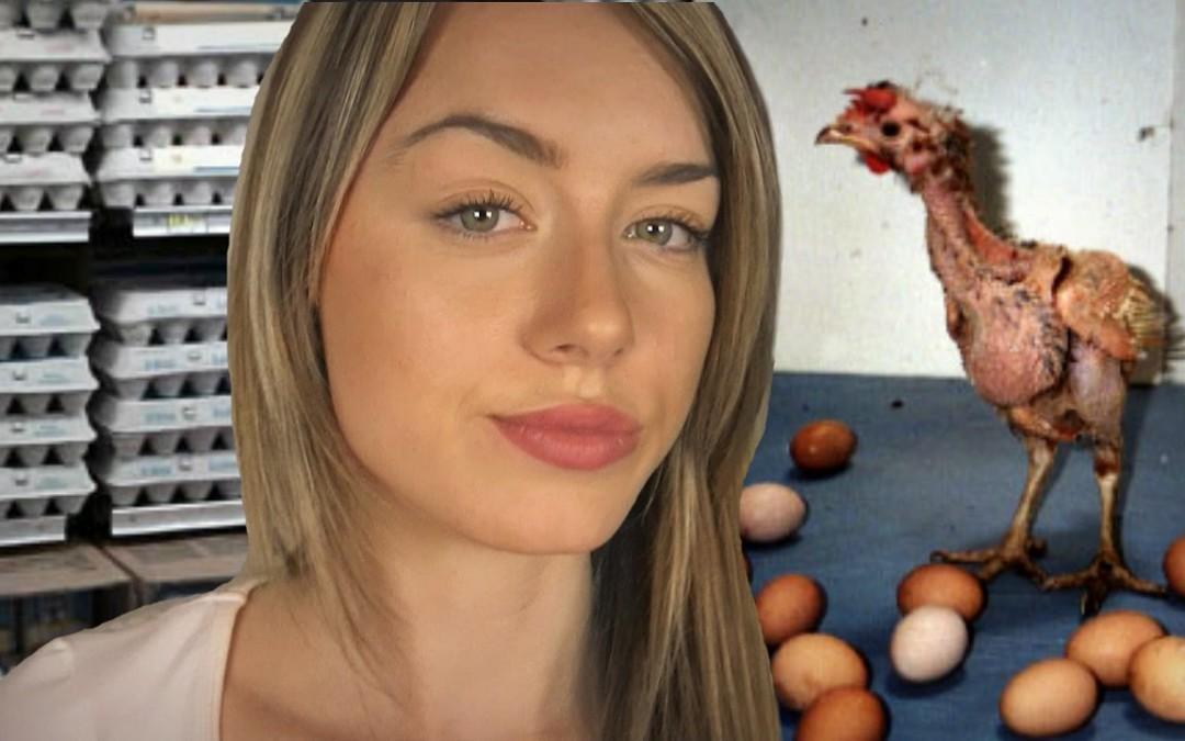 Sehr gutes Video über Hühner und Eier