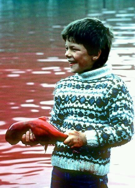 Ein lachendes Kind hält einen Fötus einer ermordeten Walmutter in der Hand – diese Woche auf den Färöer Inseln