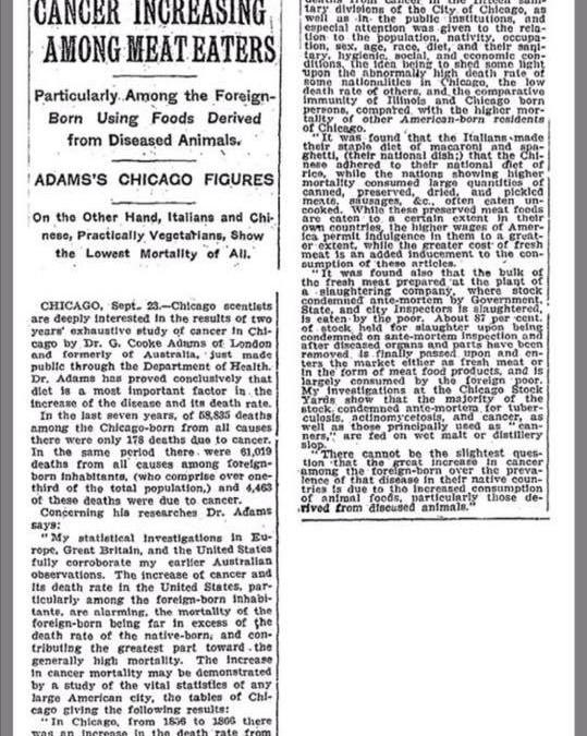 Schon 1907 (!) berichtete die New York Times über Studien, die eine erhöhte Krebsraten bei Fleischessern feststellten
