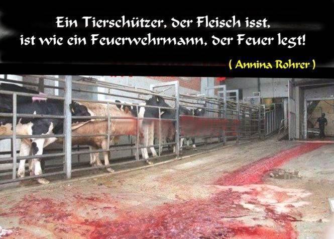 """Tier""""schützer"""", die Fleisch essen oder Fleisch an ihre Haustiere verfüttern, und Vegetarier, die Milch trinken, sie alle sind wie Feuerwehrleute, die Feuer legen"""