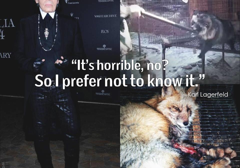 So exzentrisch Karl Lagerfeld auch sein mag, in Sachen Tierrechten stimmt er mit 98,5 % der Bevölkerung überein:
