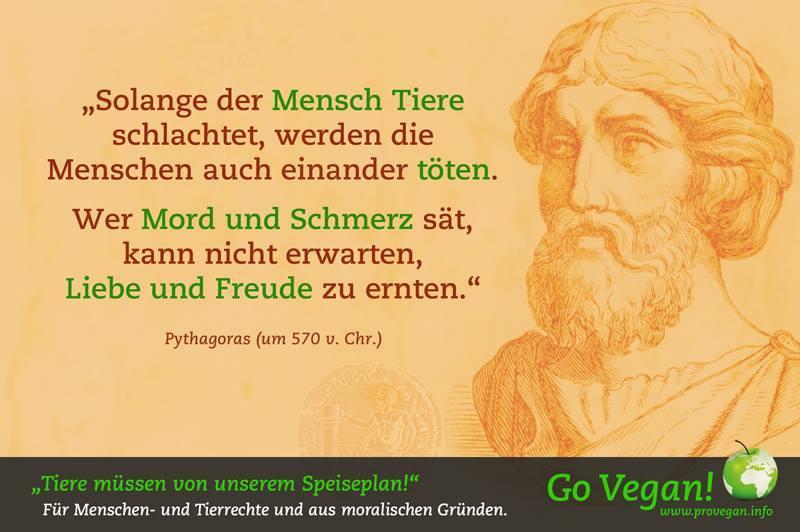 """""""Solange der Mensch Tiere schlachtet, werden die Menschen auch einander töten. Wer Mord und Schmerz sät, kann nicht erwarten, Liebe und Freude zu ernten.""""Pythagoras"""