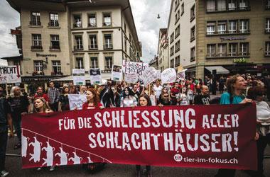 Sehr gut! – Die Schliessung aller Schlachthäuser wurde 2014 in Bern gefordert