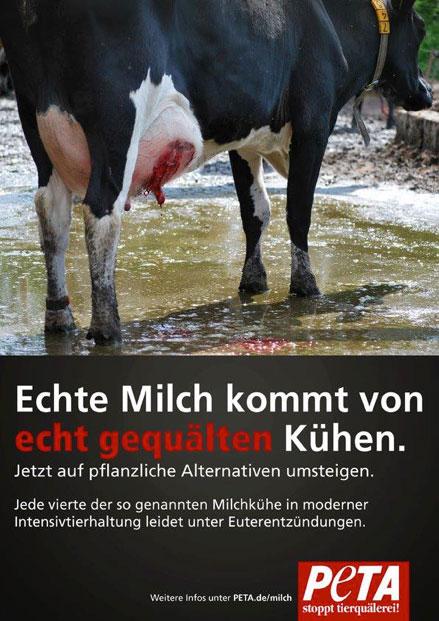 Am 1. Juni war Welt-Tierquäler-Tag, Welt-Gift-Tag bzw. Welt-Manipulations-Tag auch euphemistisch Welt-Milch-Tag genannt!