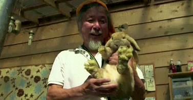 Beeindruckend! Fukushima: Tierschützer Keigo Sakamoto opfert sich für die Tiere