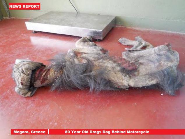 80-jähriger Mann bindet Hund an sein Motorrad und schleift ihn zu Tode