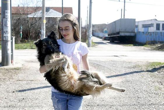 Eine 13-Jährige rettet Hunde in Rumänien: Ana-Maria Ciulcu