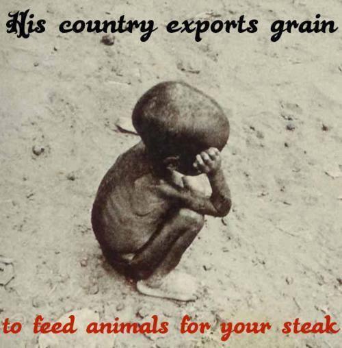 Sein Land exportiert Getreide zur Fütterung der Tiere für Dein Steak, Deine Milch und Deine Eier