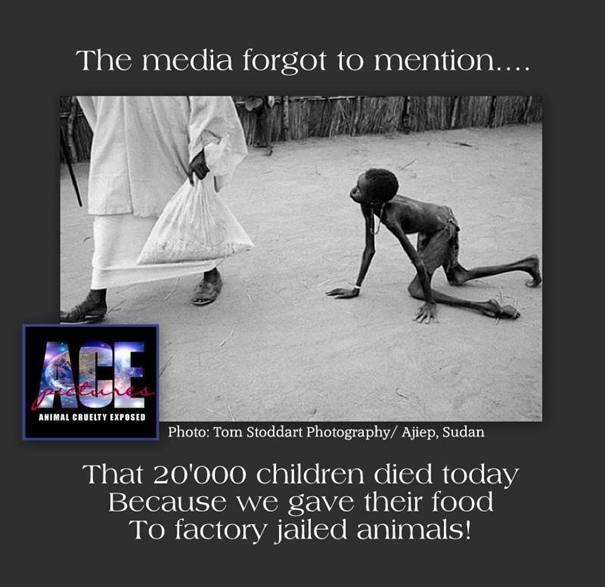 Auch heute kein Wort darüber in den Medien: 6.000 – 43.000 Kinder sind heute verhungert – so wie jeden Tag!