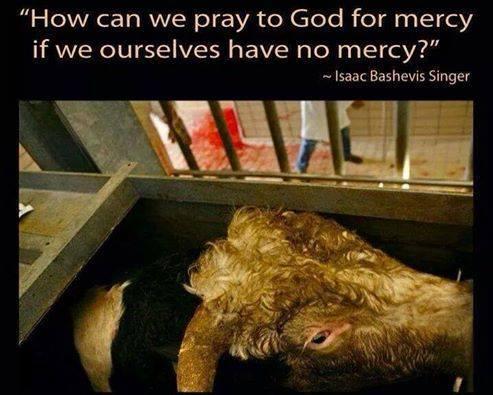 """""""Wie können wir Gott um Gnade bitten, wenn wir selbst gnadenlos sind?"""""""