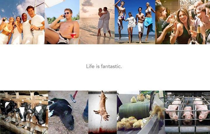 Ist das Leben für alle fantastisch?